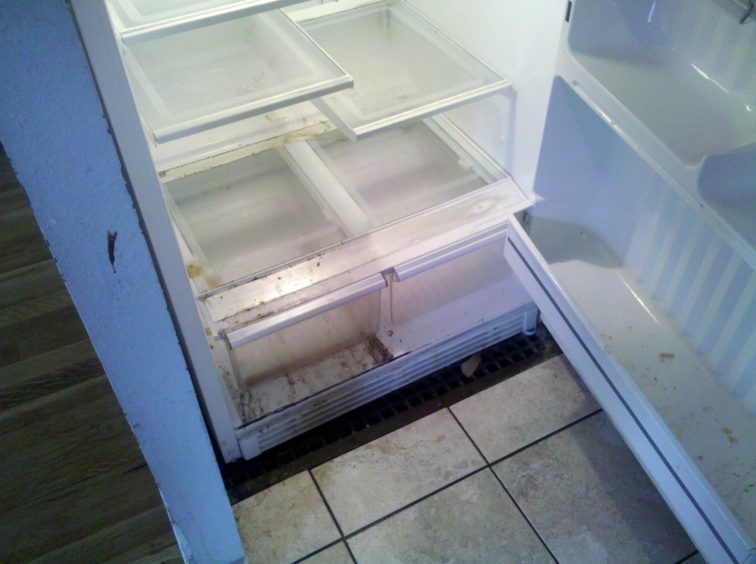 Worst fridge - 2014