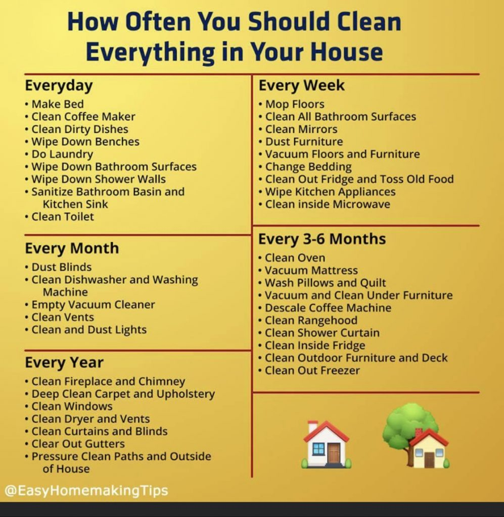 how often you should clean everything in your house